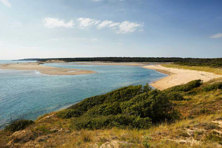 Estuaire du payre Vendée